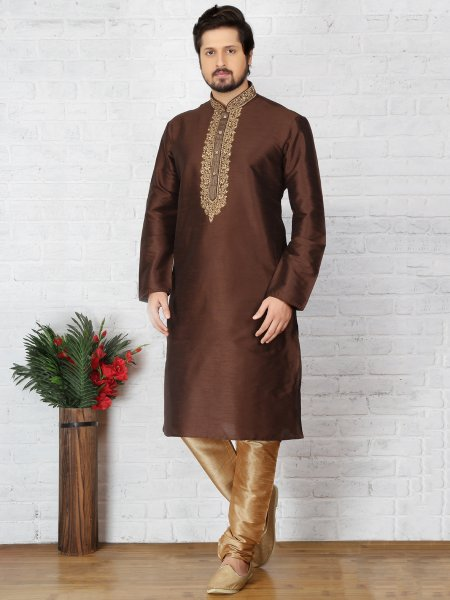 Bistre Brown Dupion Art Silk Embroidered Festival Kurta