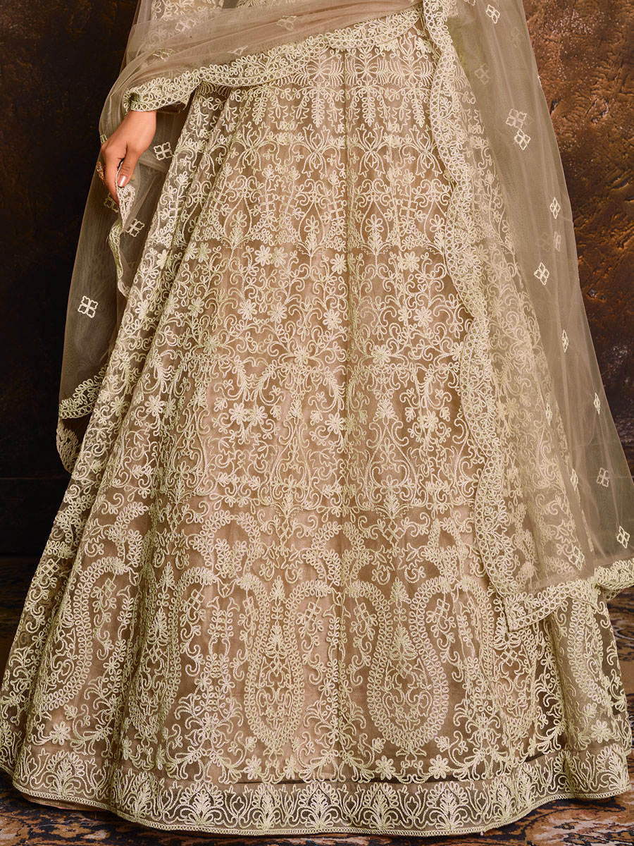 Gray Net Embroidered Festival Lawn Kameez