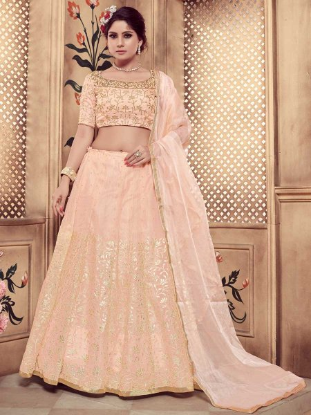 Coral Pink Organza Embroidered Party Lehenga Choli